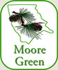 Moore Green Council